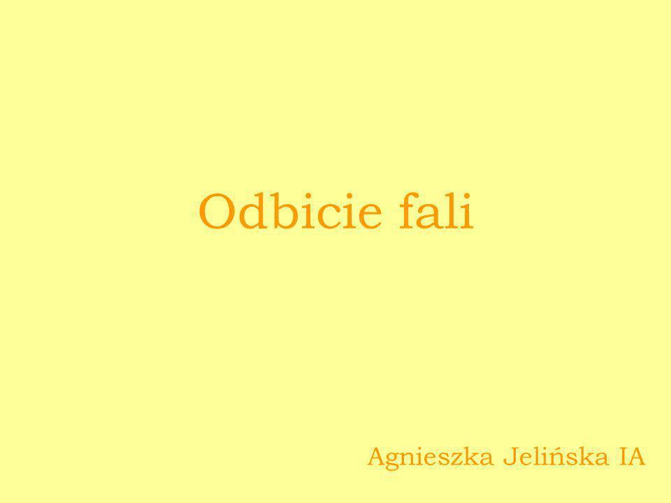 Odbicie fali Agnieszka Jelińska IA