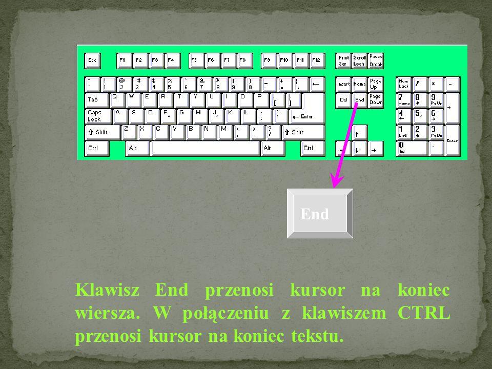 Home Home przenosi kursor na początek wiersza. W połączeniu z klawiszem CTRL przenosi kursor na początek tekstu.