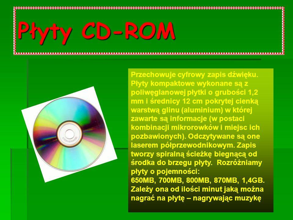 Płyty CD-ROM Przechowuje cyfrowy zapis dźwięku.