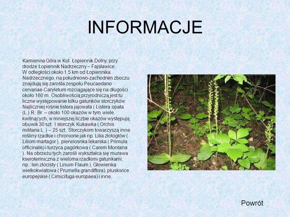 INFORMACJE Powrót Kamienna Góra w Kol. Łopiennik Dolny, przy drodze Łopiennik Nadrzeczny – Fajsławice. W odległości około 1,5 km od Łopiennika Nadrzec