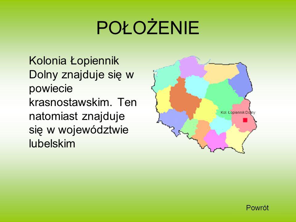 POŁOŻENIE Kolonia Łopiennik Dolny znajduje się w powiecie krasnostawskim. Ten natomiast znajduje się w województwie lubelskim Kol. Łopiennik Dolny Pow