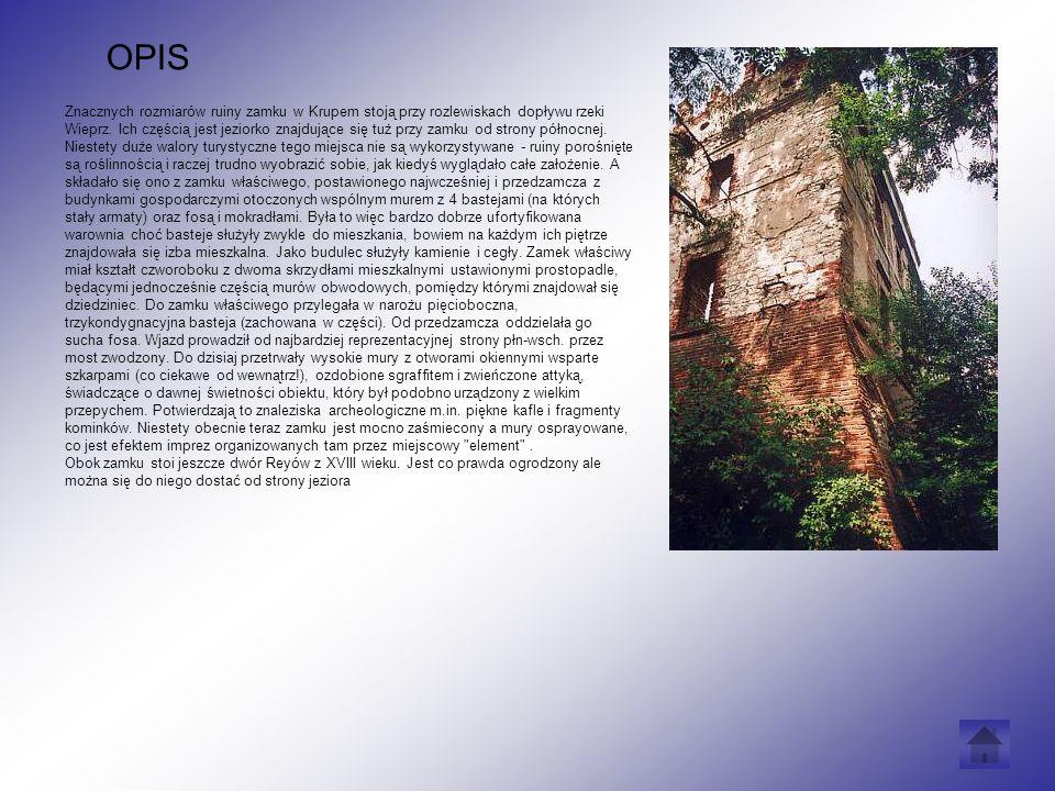 Znacznych rozmiarów ruiny zamku w Krupem stoją przy rozlewiskach dopływu rzeki Wieprz.