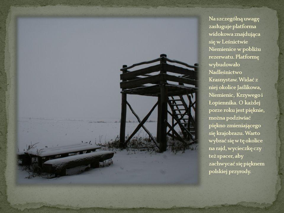 Na szczególną uwagę zasługuje platforma widokowa znajdująca się w Leśnictwie Niemienice w pobliżu rezerwatu.