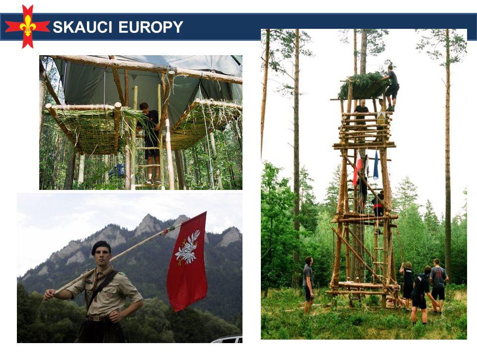 Wymiar europejski Obozy zagraniczne Obozy krajowe z udziałem zagranicznych drużyn Działamy w 19 krajach Eurojam 2003 Euromoot 2007 Eurojam 2014!