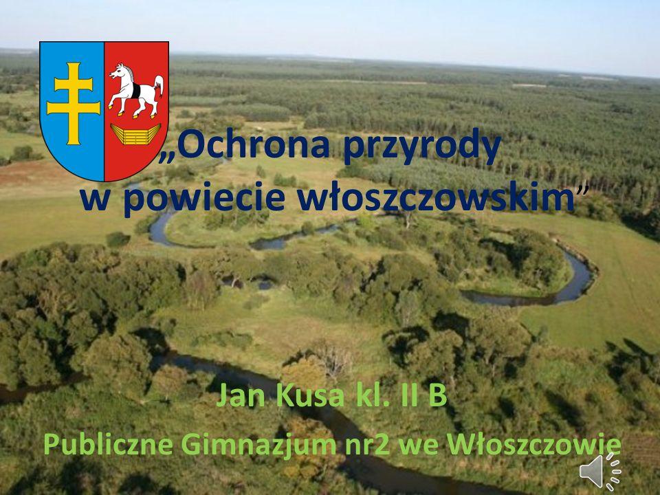 Ochrona przyrody w powiecie włoszczowskim Jan Kusa kl. II B Publiczne Gimnazjum nr2 we Włoszczowie