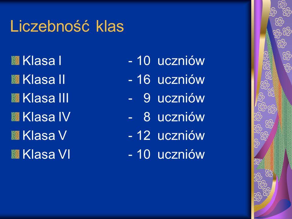 Liczebność klas Klasa I- 10 uczniów Klasa II - 16uczniów Klasa III- 9 uczniów Klasa IV- 8uczniów Klasa V- 12uczniów Klasa VI- 10uczniów