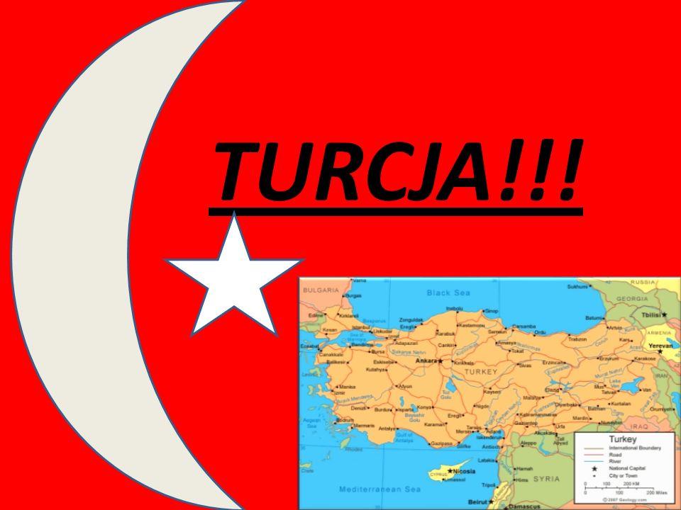 COMENIUS!!! Kraje partnerskie: Włochy, Turcja, Polska, Słowacja.