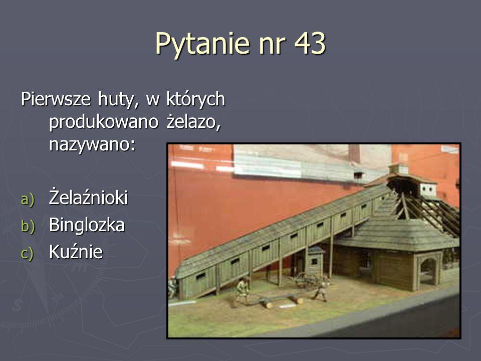 Pytanie nr 43 Pierwsze huty, w których produkowano żelazo, nazywano: a) Żelaźnioki b) Binglozka c) Kuźnie