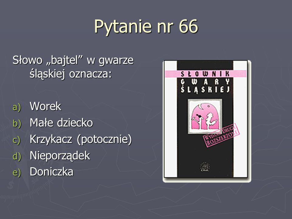 Pytanie nr 66 Słowo bajtel w gwarze śląskiej oznacza: a) Worek b) Małe dziecko c) Krzykacz (potocznie) d) Nieporządek e) Doniczka