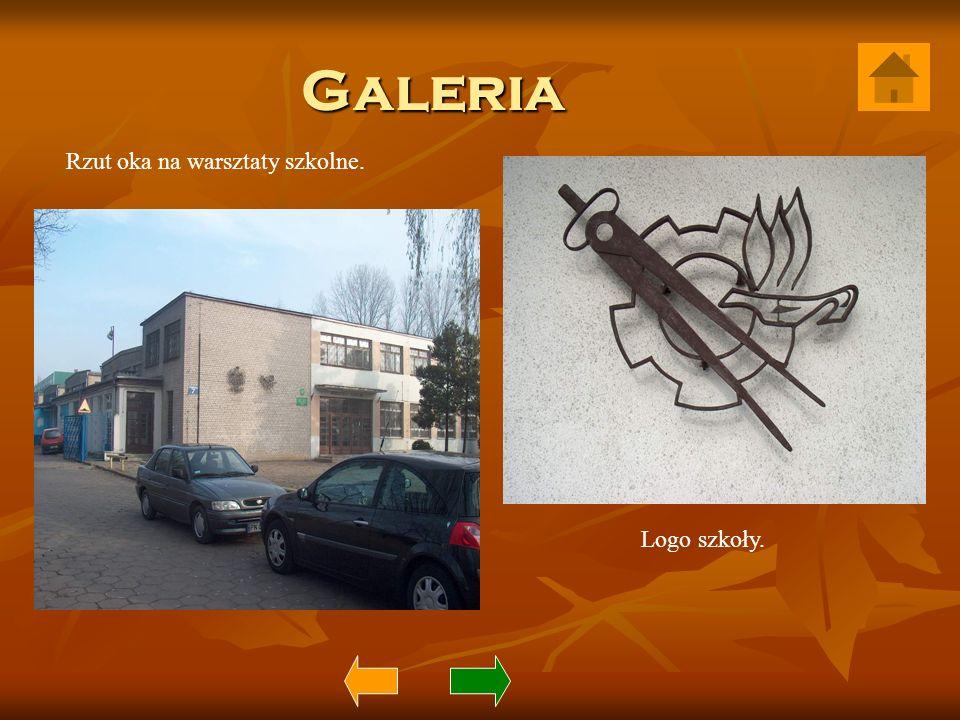 Galeria Rzut oka na warsztaty szkolne. Logo szkoły.