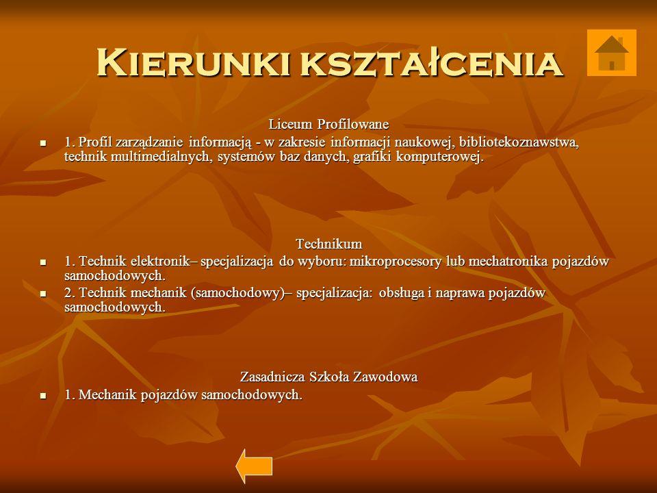 Fizyka mgr Tadeusz Gawryszczak mgr Tadeusz Gawryszczak mgr Andrzej Matczak mgr Andrzej Matczak mgr Małgorzata Rojewska mgr Małgorzata Rojewska mgr Rafał Krajewski mgr Rafał Krajewski