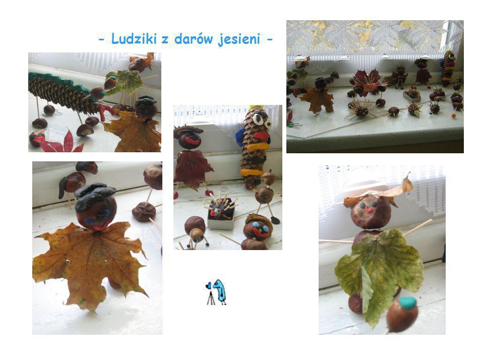 - Ludziki z darów jesieni -