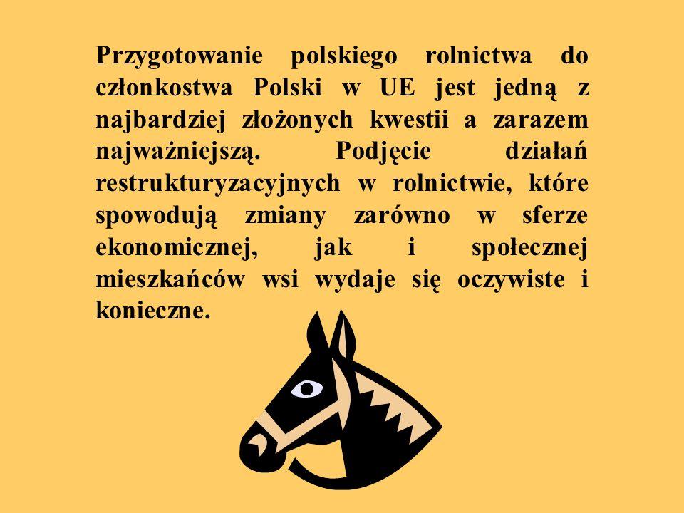Strona tytułowa PRACA ZALICZENIOWA PRZEDMIOT: KOMPUTEROWE WSPOMAGANIE DECYZJI FINANSOWYCH POLSKIE ROLNICTWO W UNII EUROPEJSKIEJ PROWADZĄCY: Prof.