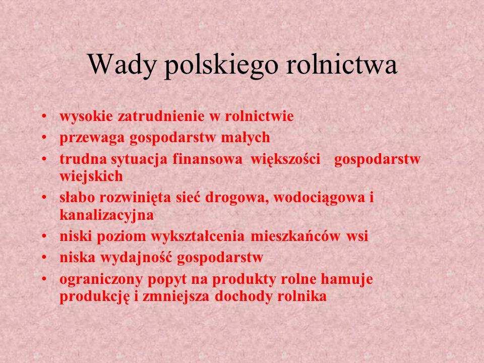 Zalety rolnictwa w Polsce duże zasoby gruntów ornych niskie koszty pracy rolników wyższa ekologicznie jakość produktów rolnych wynikająca z mniejszego wykorzystania nawozów sztucznych i środków ochrony roślin młody wiek polskich rolników