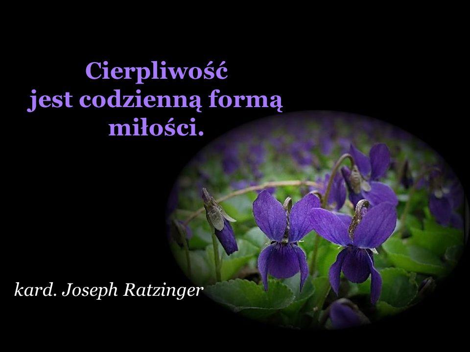 Miłość Boga jest wtedy czysta, kiedy równą wdzięczność budzi w nas radość i cierpienie. Simone Weil