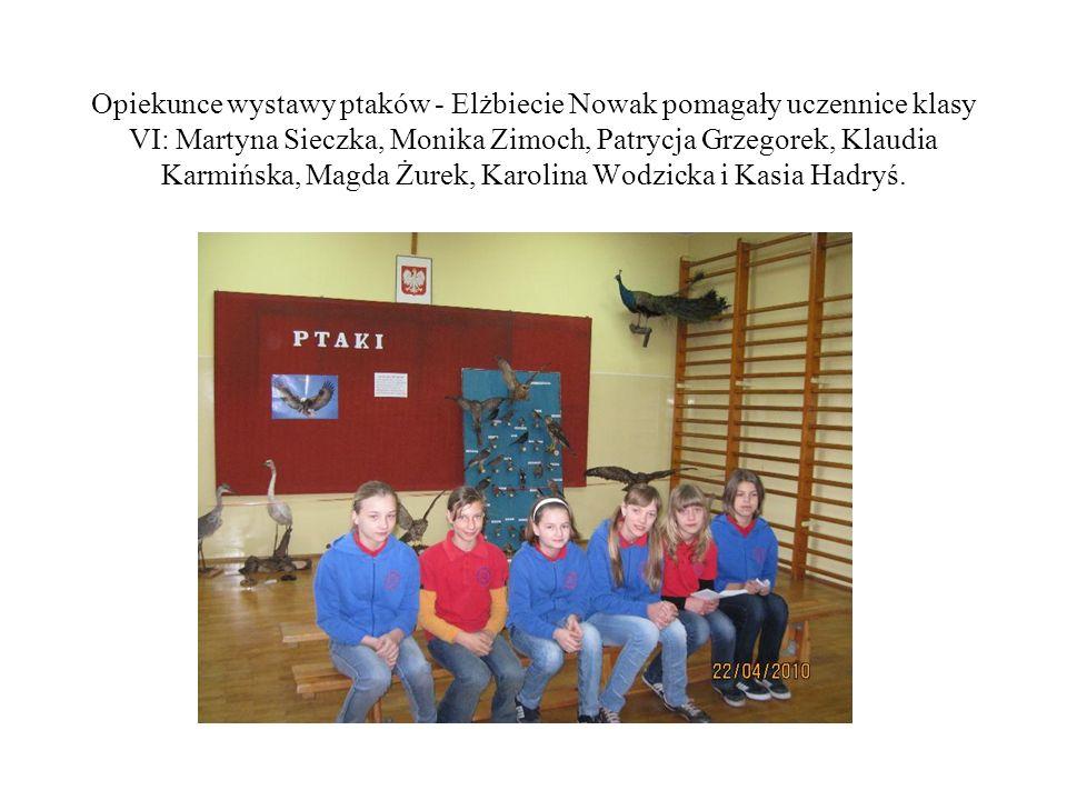 Opiekunce wystawy ptaków - Elżbiecie Nowak pomagały uczennice klasy VI: Martyna Sieczka, Monika Zimoch, Patrycja Grzegorek, Klaudia Karmińska, Magda Ż