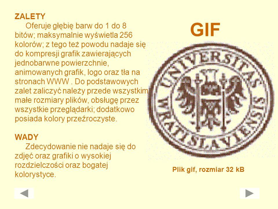GIF Plik gif, rozmiar 32 kB ZALETY Oferuje głębię barw do 1 do 8 bitów; maksymalnie wyświetla 256 kolorów; z tego też powodu nadaje się do kompresji g