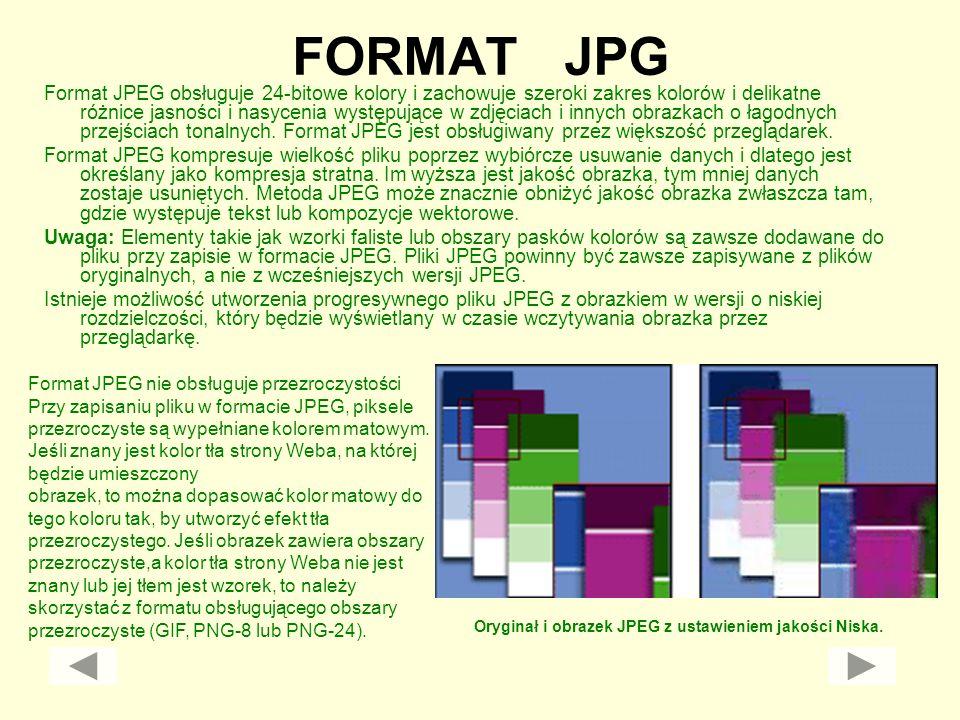 FORMAT JPG Format JPEG obsługuje 24-bitowe kolory i zachowuje szeroki zakres kolorów i delikatne różnice jasności i nasycenia występujące w zdjęciach