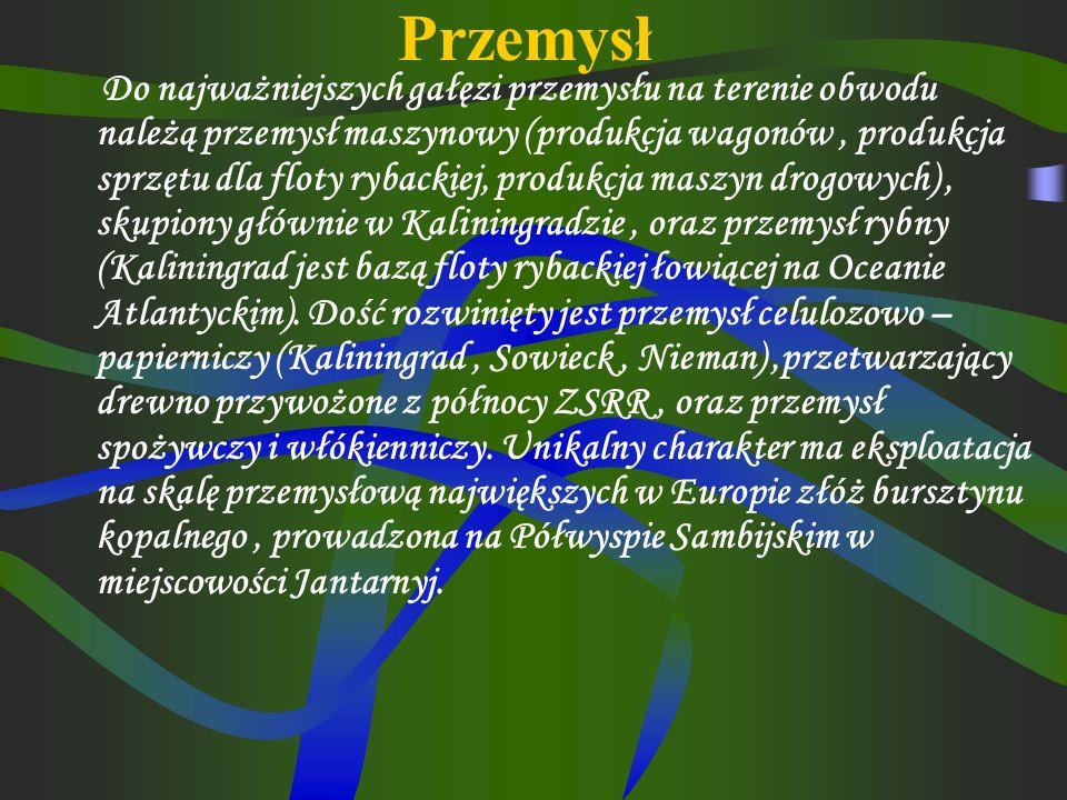 Obecna ludność obwodu składa się głównie z Rosjan (78%), Mieszkają tu również Białorusini oraz nieliczni Ukraińcy i Litwini.. Wysoki udział ludności m