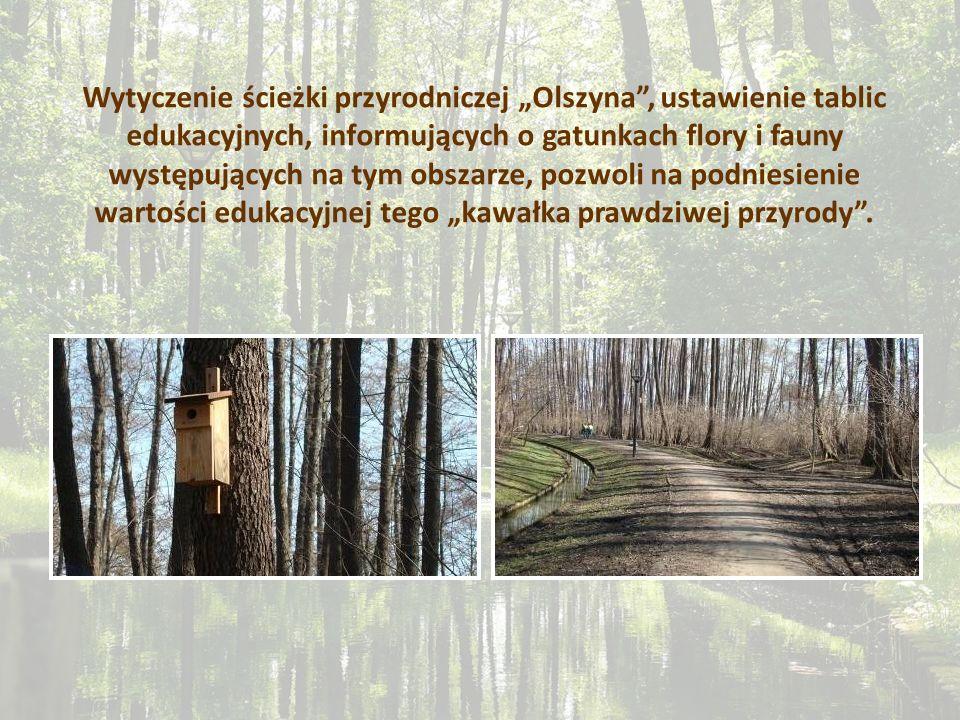 Wytyczenie ścieżki przyrodniczej Olszyna, ustawienie tablic edukacyjnych, informujących o gatunkach flory i fauny występujących na tym obszarze, pozwo