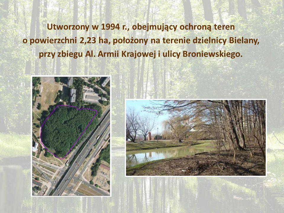 Utworzony w 1994 r., obejmujący ochroną teren o powierzchni 2,23 ha, położony na terenie dzielnicy Bielany, przy zbiegu Al. Armii Krajowej i ulicy Bro