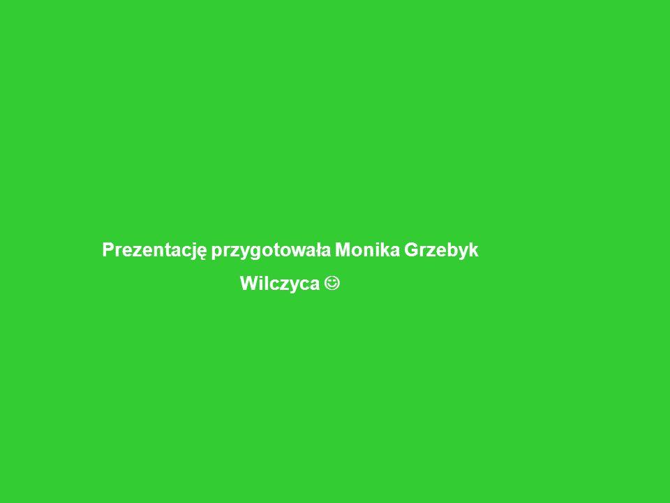 Prezentację przygotowała Monika Grzebyk Wilczyca