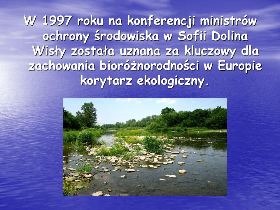 W 1997 roku na konferencji ministrów ochrony środowiska w Sofii Dolina Wisły została uznana za kluczowy dla zachowania bioróżnorodności w Europie kory