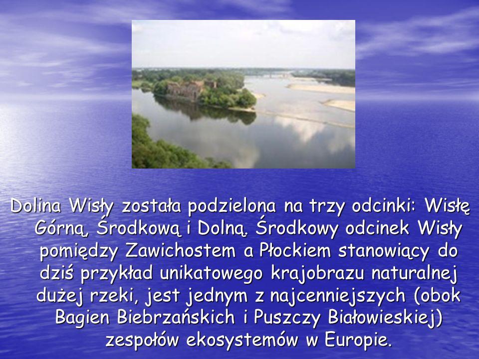 Dolina Wisły została podzielona na trzy odcinki: Wisłę Górną, Środkową i Dolną. Środkowy odcinek Wisły pomiędzy Zawichostem a Płockiem stanowiący do d