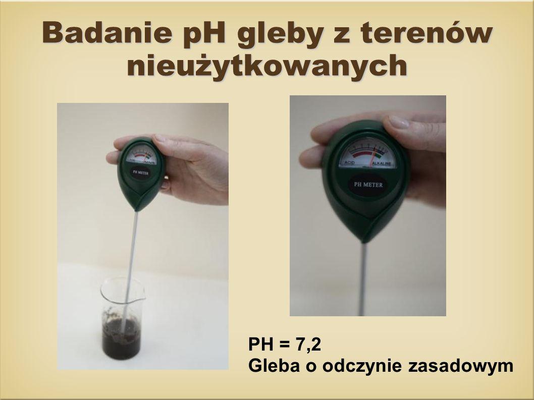 Badanie pH gleby z terenów nieużytkowanych PH = 7,2 Gleba o odczynie zasadowym