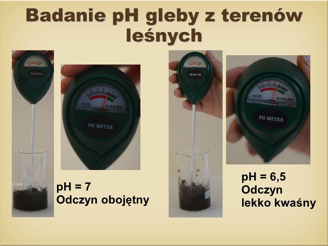 Badanie pH gleby z terenów leśnych pH = 6,5 Odczyn lekko kwaśny pH = 7 Odczyn obojętny