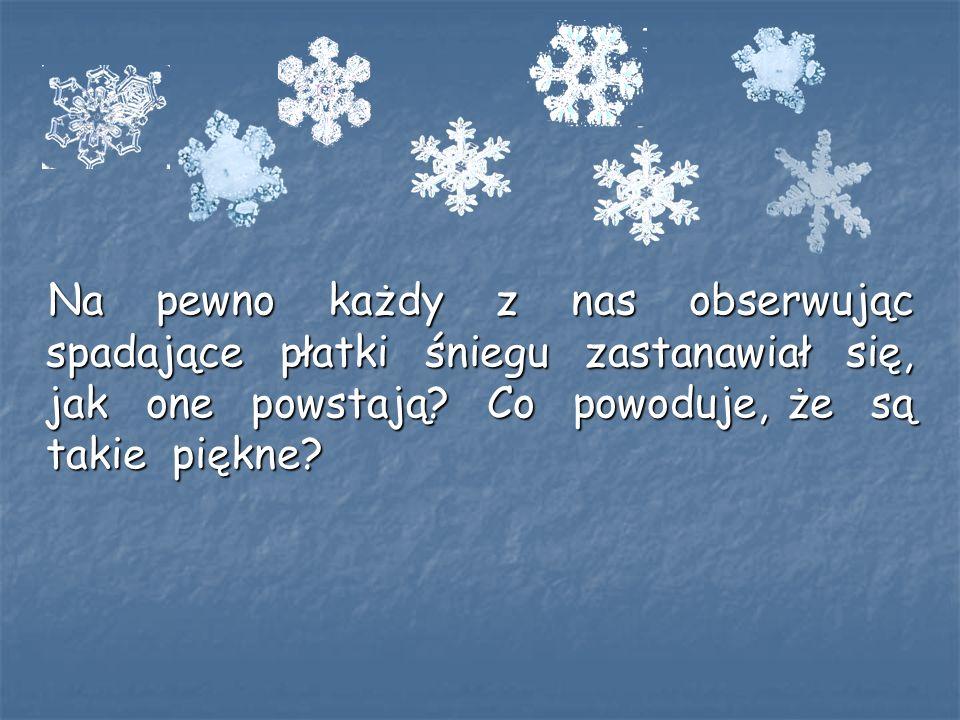 Dzięki naukowcom wiele już wiemy o śniegu : wiemy, czym jest śnieg, jak się tworzy i jakie ma właściwości.