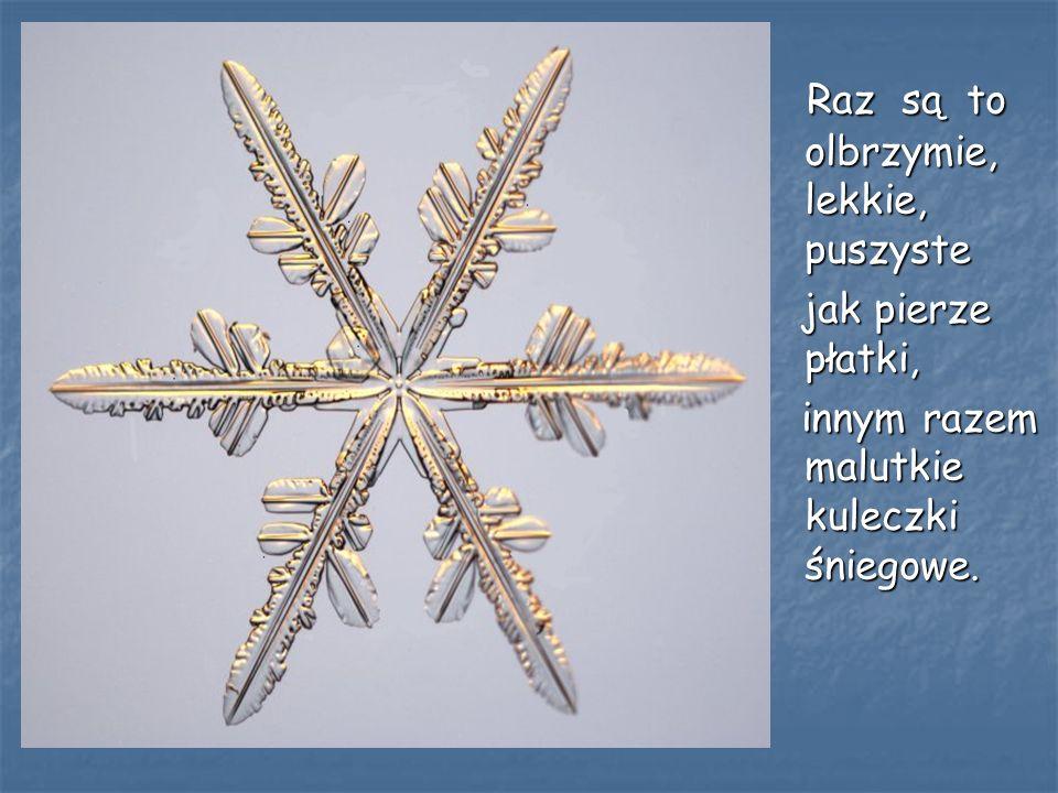 Tak jak my, WIELU poważnych naukowców, fascynuje się pojedynczymi gwiazdkami śniegu.