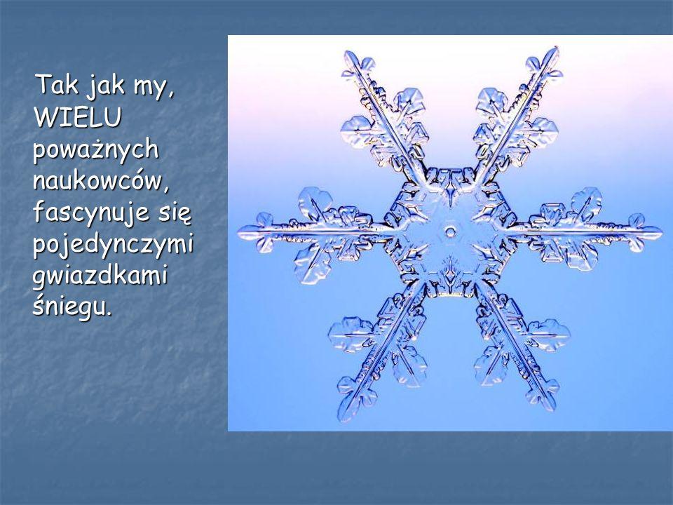 Tak jak my, WIELU poważnych naukowców, fascynuje się pojedynczymi gwiazdkami śniegu. Tak jak my, WIELU poważnych naukowców, fascynuje się pojedynczymi