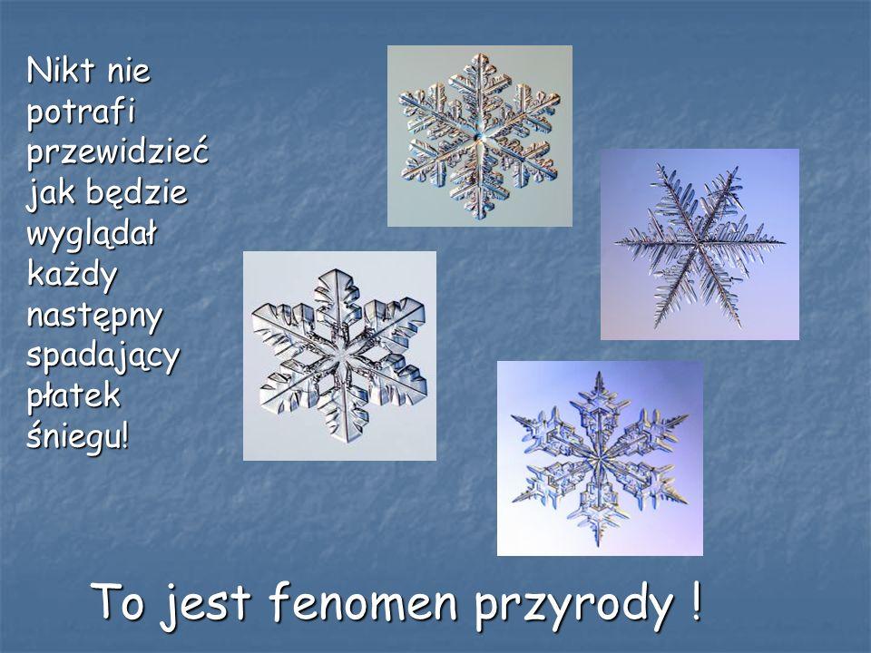 Dlaczego płatki śniegu są płaskie? Odpowiada: dr Łukasz Kłopotowski z Instytutu Fizyki PAN: