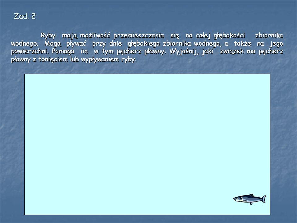 Ryby mają możliwość przemieszczania się na całej głębokości zbiornika wodnego.
