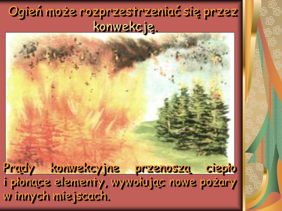 Ogień może rozprzestrzeniać się przez konwekcję. Prądy konwekcyjne przenoszą ciepło i płonące elementy, wywołując nowe pożary w innych miejscach.