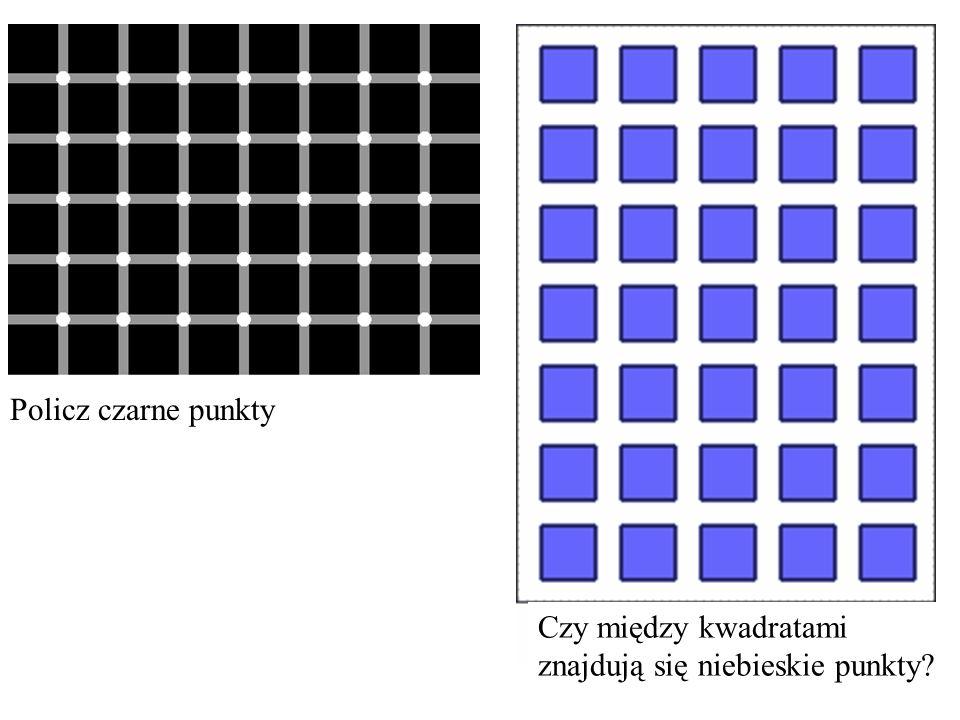 Policz czarne punkty Czy między kwadratami znajdują się niebieskie punkty?