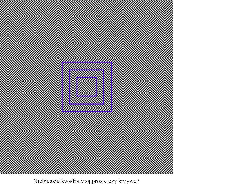 Niebieskie kwadraty są proste czy krzywe?