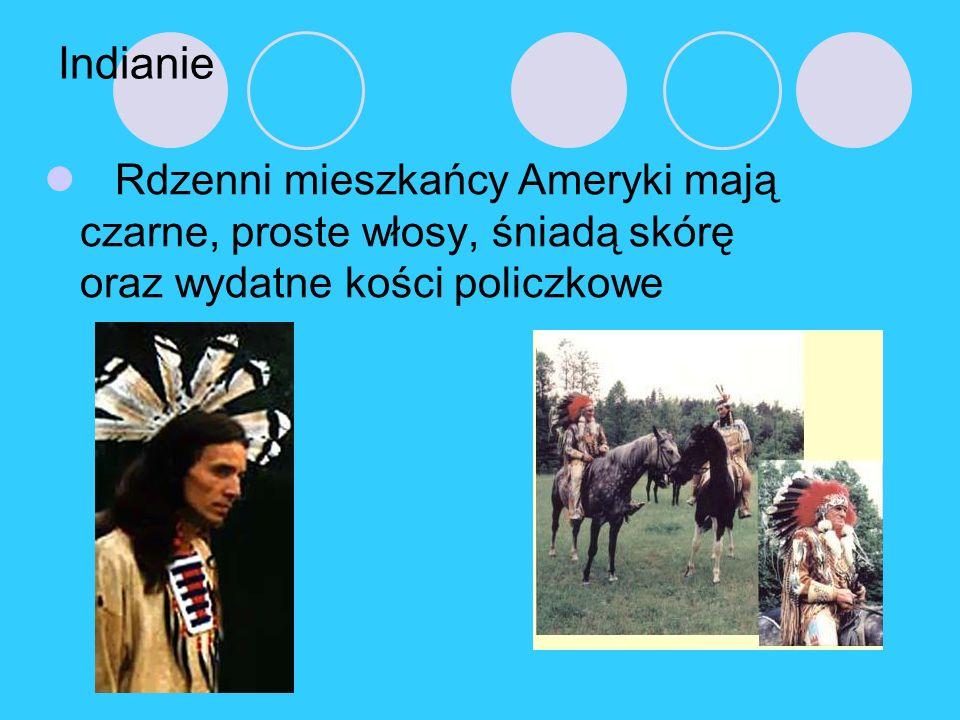 Indianie Rdzenni mieszkańcy Ameryki mają czarne, proste włosy, śniadą skórę oraz wydatne kości policzkowe