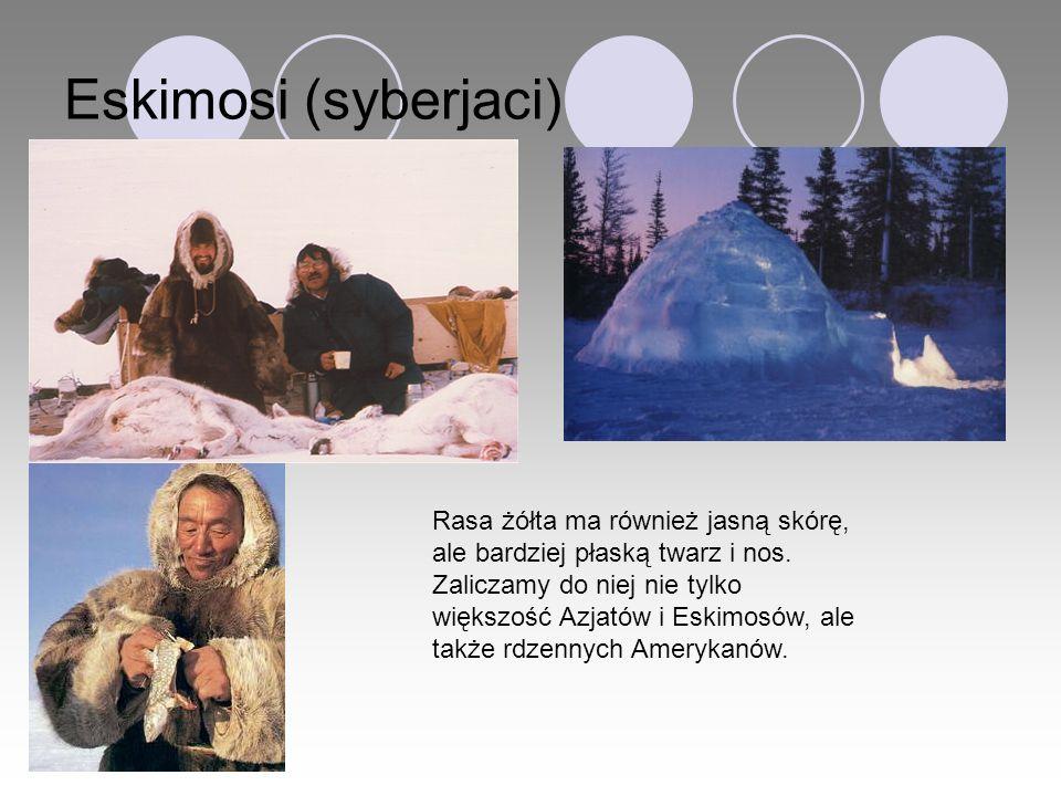 Eskimosi (syberjaci) Rasa żółta ma również jasną skórę, ale bardziej płaską twarz i nos. Zaliczamy do niej nie tylko większość Azjatów i Eskimosów, al