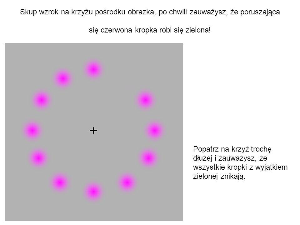 Skup wzrok na krzyżu pośrodku obrazka, po chwili zauważysz, że poruszająca się czerwona kropka robi się zielona! Popatrz na krzyż trochę dłużej i zauw