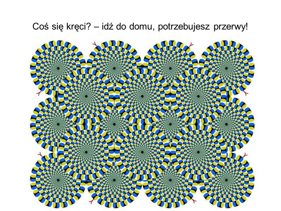 Spójrz na zdjęcie.Co widzisz.