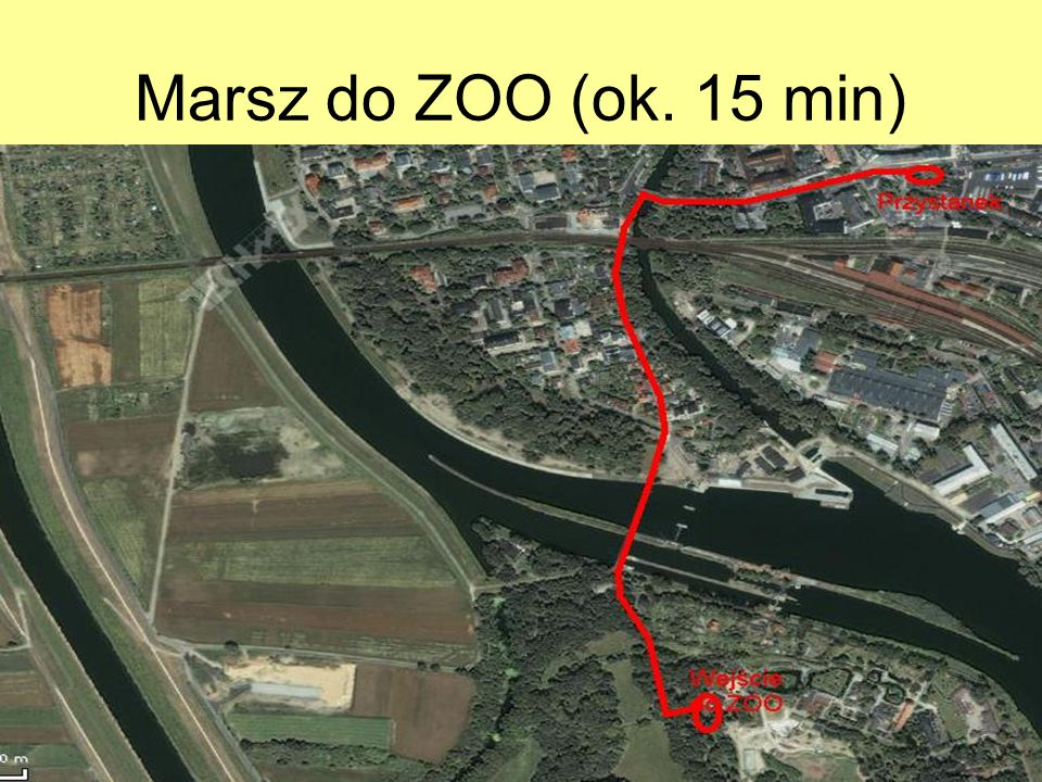 Marsz do ZOO (ok. 15 min)