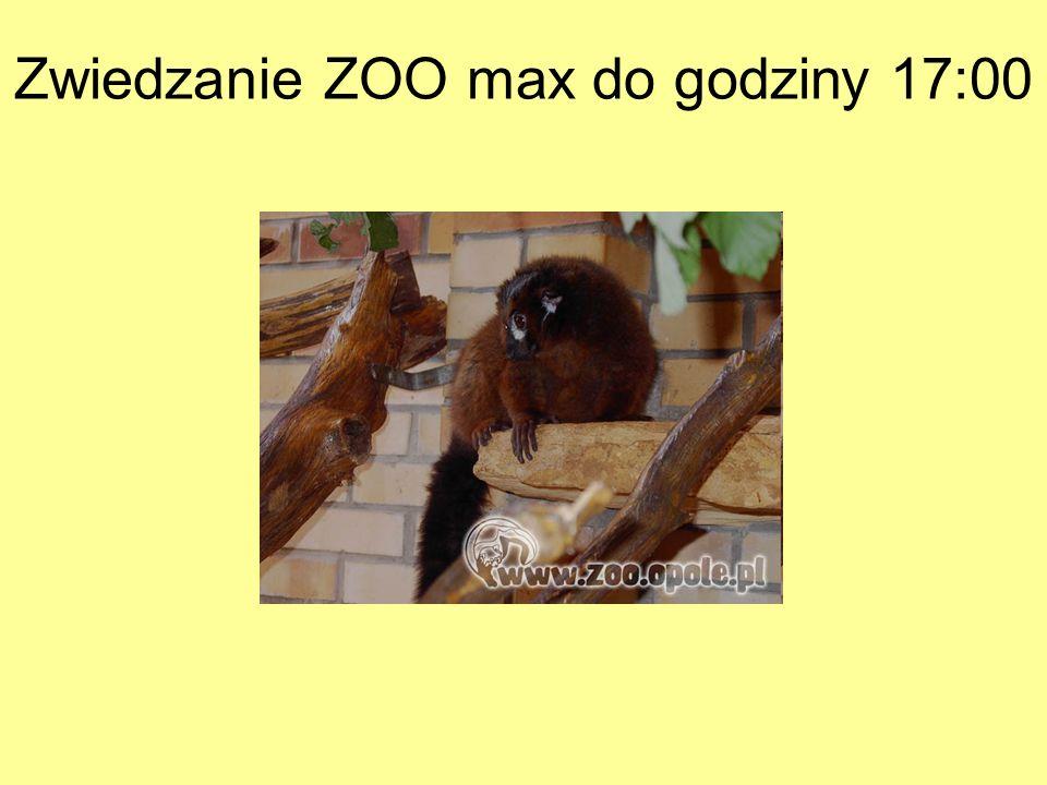 Zwiedzanie ZOO max do godziny 17:00