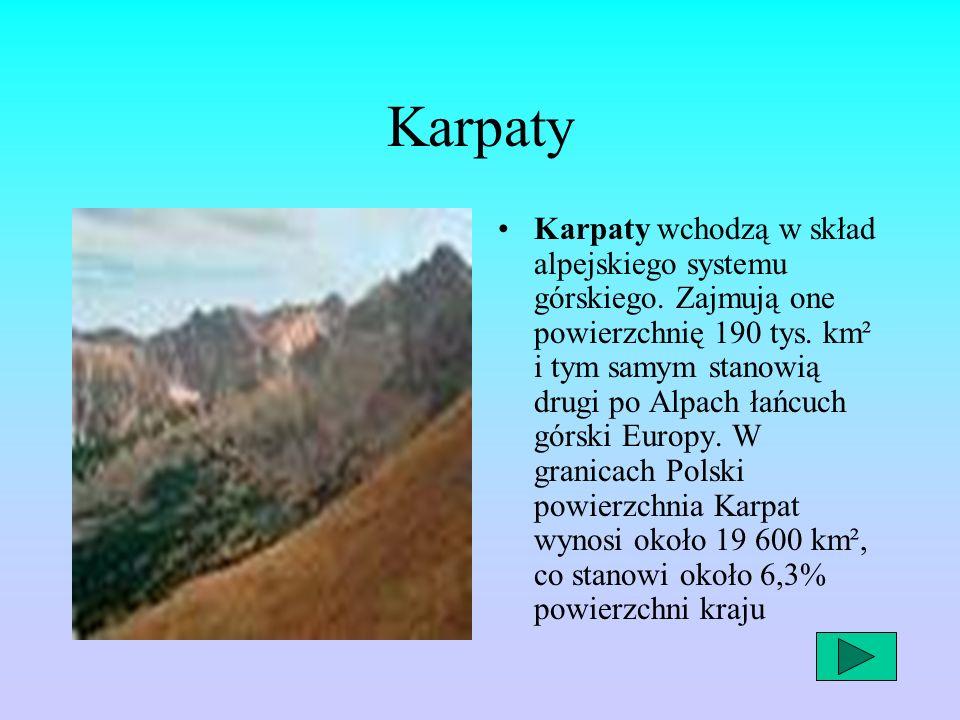 Karpaty Karpaty wchodzą w skład alpejskiego systemu górskiego. Zajmują one powierzchnię 190 tys. km² i tym samym stanowią drugi po Alpach łańcuch górs