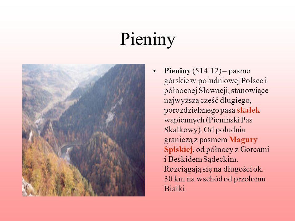 Pieniny Pieniny (514.12) – pasmo górskie w południowej Polsce i północnej Słowacji, stanowiące najwyższą część długiego, porozdzielanego pasa skałek w
