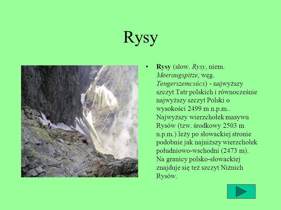 Rysy Rysy (słow. Rysy, niem. Meeraugspitze, węg. Tengerszemcsúcs) - najwyższy szczyt Tatr polskich i równocześnie najwyższy szczyt Polski o wysokości