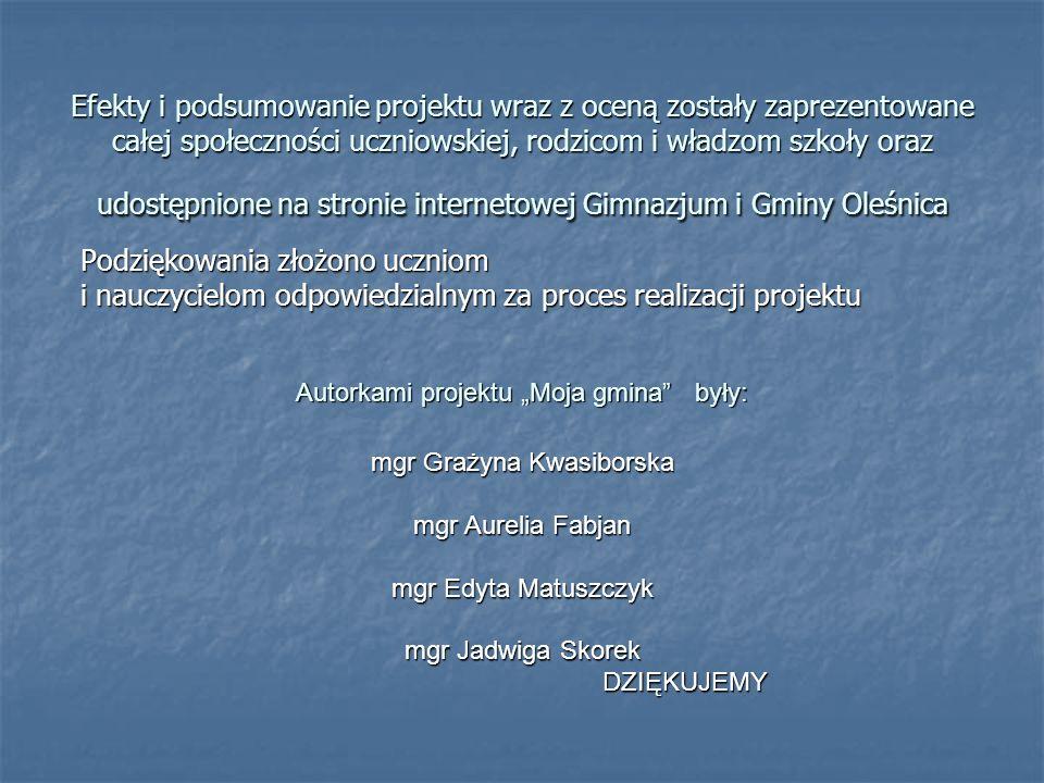 Efekty i podsumowanie projektu wraz z oceną zostały zaprezentowane całej społeczności uczniowskiej, rodzicom i władzom szkoły oraz udostępnione na str