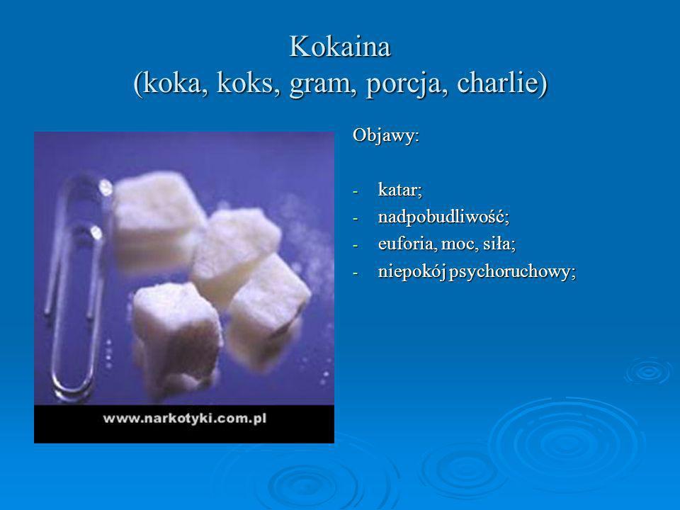 Kokaina (koka, koks, gram, porcja, charlie) Objawy: - katar; - nadpobudliwość; - euforia, moc, siła; - niepokój psychoruchowy;