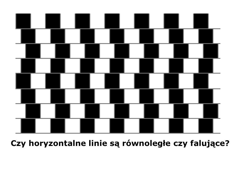 Czy horyzontalne linie są równoległe czy falujące?